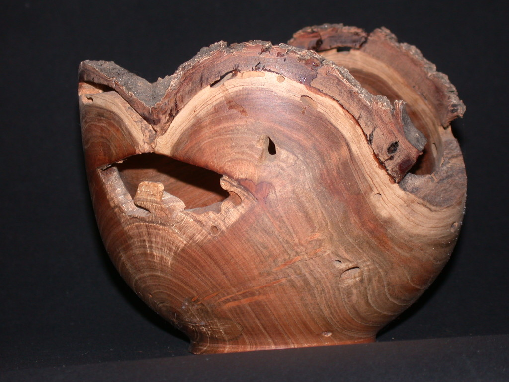 Bowl with Bark Still On